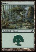 [EN][FOIL]《森/Forest(10E)》 382/383