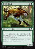 [JP][FOIL]《野生の雑種犬/Wild Mongrel(UMA)》