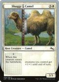 [EN][FOIL]《Shaggy Camel(UST)》