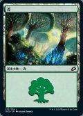 [JP][FOIL]《森/Forest(IKO)》272/274