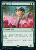 [JP][FOIL]《水蓮のコブラ/Lotus Cobra(ZNR)》