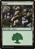 [EN][FOIL]《森/Forest(ZNR)》384