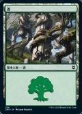 [JP][FOIL]《森/Forest(ZNR)》384
