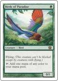 [EN][FOIL]《極楽鳥/Birds of Paradise(8ED)》
