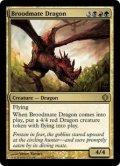 [EN][FOIL]《若き群れのドラゴン/Broodmate Dragon(ALA)》