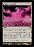 [JP][FOIL]《グリクシスの全景/Grixis Panorama(ALA)》