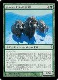 [JP][FOIL]《オーロクスの獣群/Aurochs Herd(CSP)》