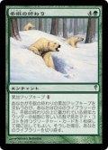 [JP][FOIL]《冬眠の終わり/Hibernation's End(CSP)》