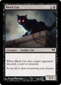 [EN][FOIL]《黒猫/Black Cat(DKA)》