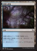 [JP][FOIL]《陰鬱な僻地/Dismal Backwater(FRF)》