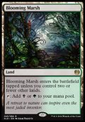 [EN][FOIL]《花盛りの湿地/Blooming Marsh(KLD)》