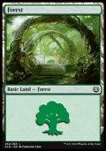 [EN][FOIL]《森/Forest(KLD)》 262/264