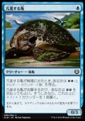 [JP][FOIL]《亢進する亀/Thriving Turtle(KLD)》