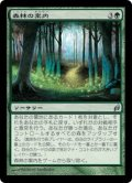 [JP][FOIL]《森林の案内/Woodland Guidance(LRW)》