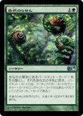 [JP][FOIL]《自然のらせん/Nature's Spiral(M10)》