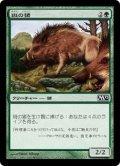 [JP][FOIL]《斑の猪/Brindle Boar(M12)》