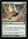 [EN][FOIL]《暗影の蜘蛛/Penumbra Spider(MMA)》