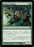 [JP][FOIL]《低木林の旗騎士/Bosk Banneret(MOR)》