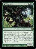 [JP][FOIL]《葉冠の古老/Leaf-Crowned Elder(MOR)》