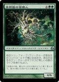 [JP][FOIL]《果樹園の管理人/Orchard Warden(MOR)》