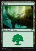 [EN][FOIL]《森/Forest(ORI)》 269/272