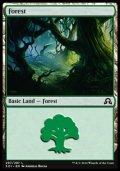 [EN][FOIL]《森/Forest(SOI)》 297/297
