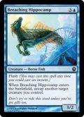 [EN][FOIL]《水跳ねの海馬/Breaching Hippocamp(THS)》