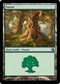 [EN][FOIL]《森/Forest(THS)》 249/249