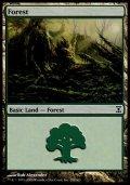 [EN][FOIL]《森/Forest(TSP)》 298/301