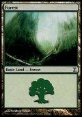 [EN][FOIL]《森/Forest(TSP)》 301/301